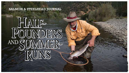 Steelhead_Article-01