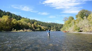 Wading in the Rogue River